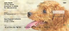 Toy Poodles Checks
