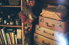 books, suitcases and dried flowers