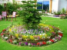 colorful circular flower bed