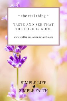 Taste and See That The Lord is Good Choosing the pure life-giving truth of God over the fake aroma of religion.