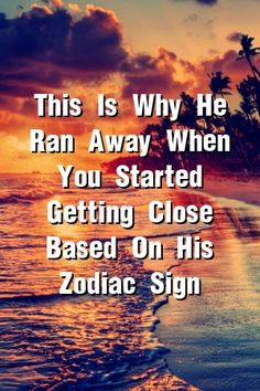 The Funniest (And Most Brutal) Horoscope You Will Ever Read About Your Zodiac Sign. Zodiac City, 12 Zodiac, Zodiac Love, Zodiac Quotes, Zodiac Facts, Astrology Compatibility, Astrology Zodiac, Astrology Signs, Astrological Sign