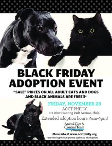The Animal Care and Control Team of Philadelphia and at PAWS of Lynwood, Washington are running a special promotion: waiving fees on all black and mostly-black dogs and cats on Black Friday.