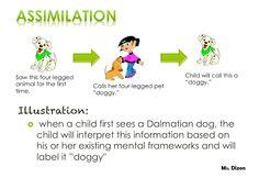 accommodation psychology definition