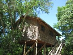 Treehouse at Scenic Hill Vacations - nestled among trees and rolling hills, so you will have beautiful scenery to look at while relaxing in this 400 square foot cottage.
