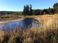 Washington Countryside....beautiful