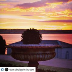 #Repost @campbellpointhouse with @repostapp.  #sunset #campbellpointhouse #bellarinepeninsula #weddinginspiration #weddingvenue #geelong #australia #weddingphotographer #love #bride #bridetobe by candleand_co http://ift.tt/1JO3Y6G