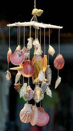 windspiel basteln fensterdeko sommer maritime deko ornamente muscheln und schneckenhäuser seesterne You are in the right place for home decor ikea Whe Wooden Wind Chimes, Seashell Wind Chimes, Diy Wind Chimes, Seashell Art, Seashell Crafts, Seashell Mobile, Small Gifts For Friends, Octopus Decor, Driftwood Candle Holders