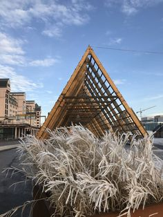 Visit SALT in Oslo - As you stroll along the Bjørvika shoreline from the Oslo Sentral St ation towards Vippetangen Port, you will find yourself walking under a gigantic fish rack. In the north of Norway, the fish rack is used to dry fish. SALT is a nomadic art project currently situated on Oslo's shoreline http://www.salted.no. Pic is mine.