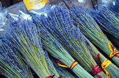 Aix-en-Provence Aix En Provence, Best Cities, Travel, Viajes, Destinations, Traveling, Trips