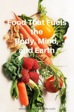 Just like our minds and our bodies, the Earth needs to be well-fed. With a little bit of effort, the food you use to fuel yourself can also be used to enrich the soil around you. We all know that the reason our bodies need food is because it provides the fuel we need for cellular growth, muscle development, and optimal brain function. But did you know the Earth can also benefit from a nutritious diet? #food #nutrition #foodasfuel #compost #exercise #mulch #earth