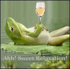 Wine = Sweet Relaxation Wine Jokes, Wine Funnies, Grape Juice, Direct Cellars, Wine O Clock, Traveling Vineyard, Fine Wine, Wine Parties, Wine Making