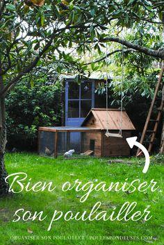 A effectively organized henhouse for wholesome hens Potager Garden, Balcony Garden, Herb Garden, Companion Gardening, Garden Plants Vegetable, Chicken Runs, Green Garden, Animal House, Hens