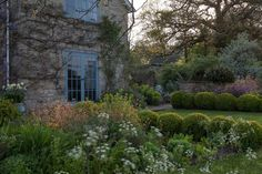 """Edge your lawn in manicured box balls - here at Tania Compton's Wiltshire home they provide a formal border to looser border planting beyond.  [i]Taken from the May 2015 issue of House & Garden.[/i]  [b]Like this? Then you'll love[/b]  [link url=""""http://www.houseandgarden.co.uk/outdoor-spaces/features/arne-maynard-garden""""]Arne Maynard's garden[/link]"""