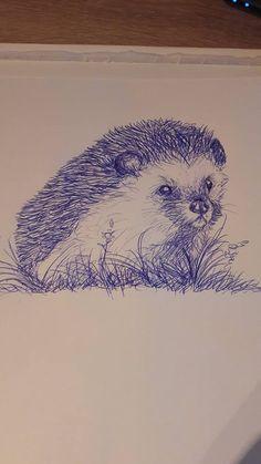 Kugelschreiber-Zeichnung Igel