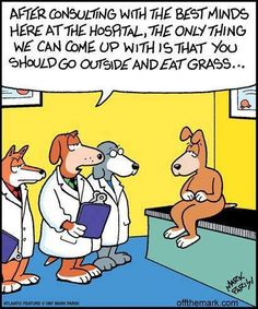 Grass seems to be the preferred form of treatment