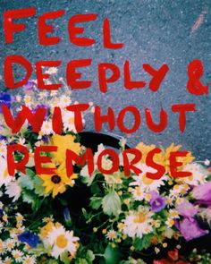 thoughts for bees Pretty Words, Beautiful Words, Cool Words, Hawke Dragon Age, All The Bright Places, Wow Art, Mellow Yellow, Wall Collage, Art Inspo