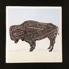 Buffalo Coasters with light blue background