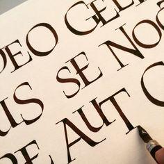 Luca Barcellona - Calligraphy - Roman Caps variations