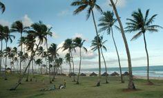 Jardim de Alah es una hermosa playa separada de la orla urbana por un conjunto de coqueros, de ahí su nombre.