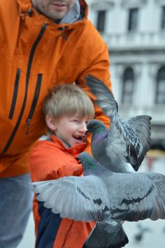 Feed the birds in Piazza San Marco, Venice my son and grandson.
