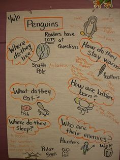 Mrs. Wills Kindergarten: Penguins! Penguins! Penguins!