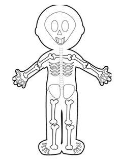 Body Preschool, Preschool Colors, Preschool Lessons, Human Body Crafts, Human Body Activities, Human Body Organ System, Body Systems, Human Body Organs, Human Body Unit