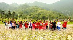 Tour du lịch Hà Giang mùa hoa Tam Giác Mạch   PYS Travel