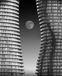 Moonrise Marilyn Monroe by Ivan Huang Moonlight Sonata, Urban, World's Biggest, Art And Architecture, Skyscraper, Photo Galleries, Black And White, Landscape, Abstract
