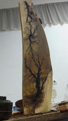 Pădurea Baciu 1.