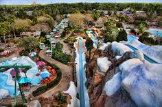 From the top of Summit Pummet, Blizzard Beach.