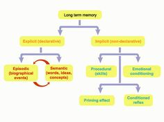 This diagram shows the set up of long term memory and how it is divided up into its catagories. It lists things each type of long term memory as well as the things each type is capable of remebering.