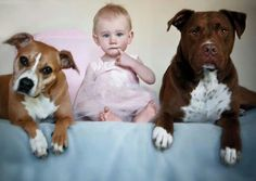 Pitbull and baby, so doing this with my dogs