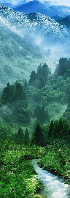 Mountain Wood Forest River Landscape