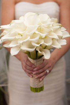 I want all white calla lilies for my bouquet. I love how full this bouquet is! I do not want just a couple; I want it to be this big and full!!