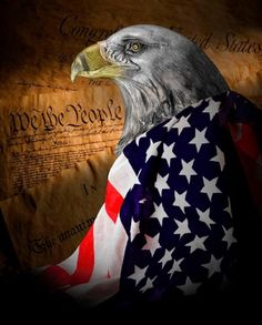 "Majority rules in America. I will honor the concept but I will fight with all my power to be a voice in OPPOSITION to Obama & his ""goals for America."" I am going to be a thorn in the side of those who, if left unchecked, will destroy our Country! Any more compromise is more defeat! I pray the results of this election will wake up many who sat on the sidelines & allowed the Socialist-Marxist anti-GOD crowd to slowly change so much of what is good in America! GOD bless you & GOD bless The USA!"