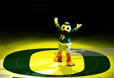 Puddles, the mascot, takes part in the opening ceremony beofre the Oregon Ducks versus the USC Trojans game at the grand opening of the Matthew Knight Arena on January 13, 2011 at Matthew Knight Arena in Eugene, Oregon.