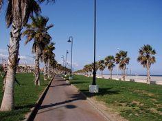 Boulevard Serena Playa - Roquetas de Mar
