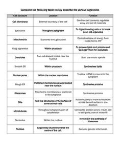 animal cell organelles their functions chart science pinterest rh pinterest com Cell Organelles Diagram Blank Cell Organelles Worksheet Diagrams