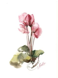Pink Cyclamens painting Original Watercolor Painting Floral Modern Watercolour Art One of a Kind Artwork Medium: top branded watercolor paints on cold press watercolor paper 140 lb (300g) Size: 9x12 (23x30.5cm) Signed front and back Dated on the back. Not framed. All paintings are gift