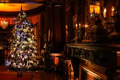 Holiday Tree, Christmas Holidays, Holiday Decor, Indirect Lighting, Instagram Website, Drawing Room, Napoleon, Wood Paneling, Plaster