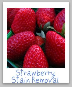 Strawberry stain removal guide for clothes, upholstery and carpet {on Stain Removal 101}