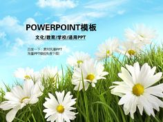 Information network powerpoint #PPT# design PPT training work summary of PPTX PPT team powerpoint ★ http://www.sucaifengbao.com/ppt/keji/