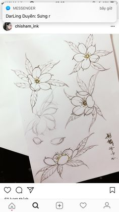 tattoos in japanese prints Asian Flowers, Oriental Flowers, Japanese Flower Tattoo, Japanese Flowers, Flor Oriental Tattoo, Japan Flower, Traditional Japanese Tattoos, Asian Tattoos, Japan Tattoo