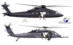 Stealth Black Hawk and Regular Black Hawk