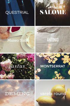 blogzilla launch   free fonts