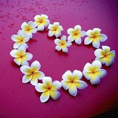 ハイビもいいけどプルメリアもね♡『プルメリアネイル』でハワイアンな夏ネイルをGET♡ | プリキャンニュース