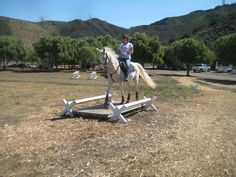 Extreme Trail Horse Obstacles | Want a better partnership with your horse?