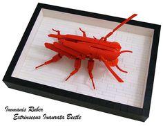 Monstrous Red Plated Beetle by Bart De Dobbelaer, via Flickr