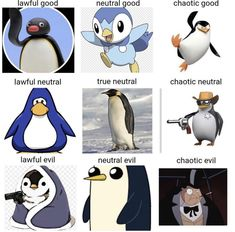 Fuck it, penguin alignment chart - Memes. All Meme, Stupid Funny Memes, Haha Funny, Funny Posts, Funny Stuff, Geeks, Videos Anime, Pokemon, Lol
