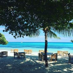 """""""Good morning from LUX* Maldives - photo by @afyfhussain"""""""